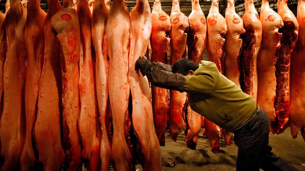 環境學者認為,工業化集成式的養殖與屠宰場很容易變成疾病的溫牀。