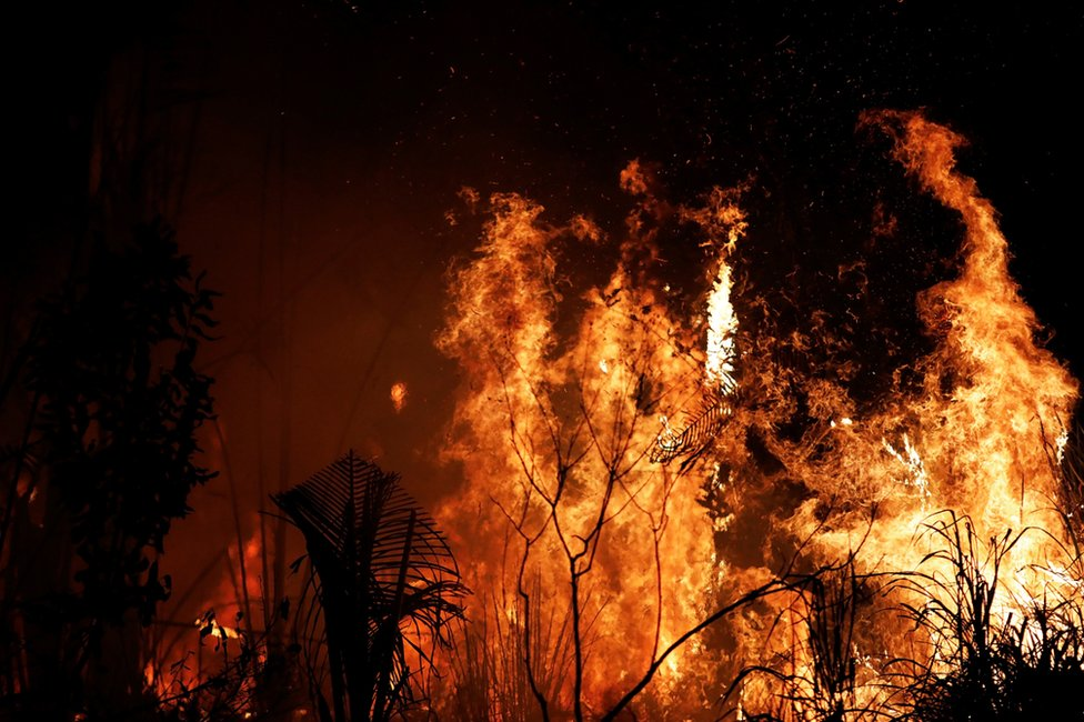 A fire burns a tract of Amazon jungle as it is cleared by loggers and farmers near Altamira, Brazil, August 27, 2019.
