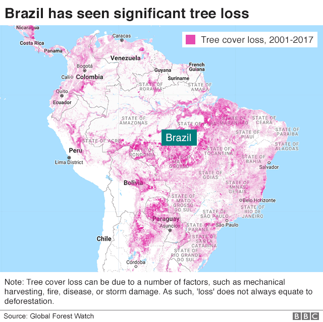 Map shows tree loss between 2001 and 2017 in South America