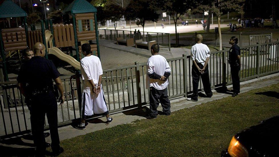 Una foto de archivo muestra el arresto de tres sospechosos de ser pandilleros de la MS-13 en Los Ángeles.