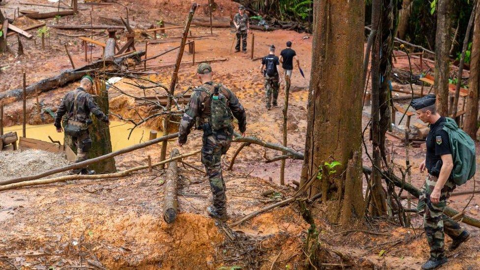 Miembros de WWF llegan a un sitio ilegal de lavado de oro en Guayana Francesa.