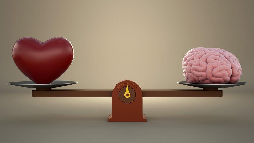 corazón y cerebro