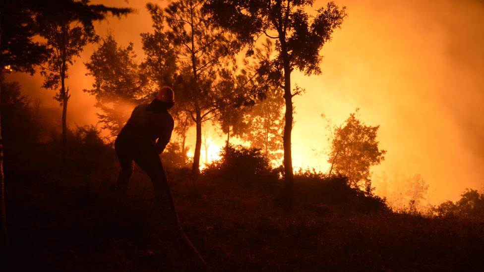 Incendio forestal en Turquía en julio
