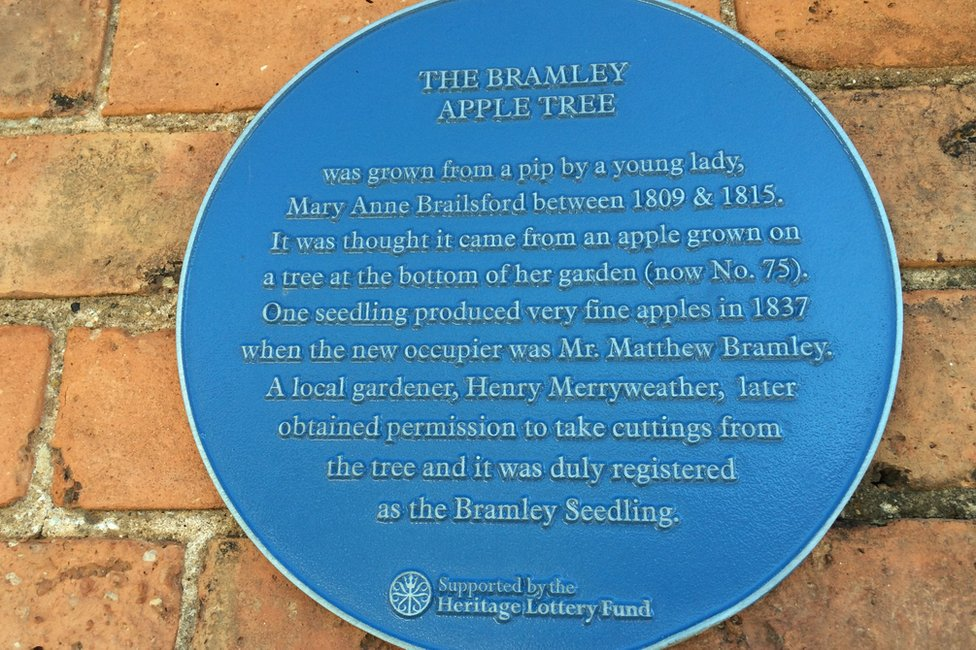 Plaque commemorating the Bramley apple tree