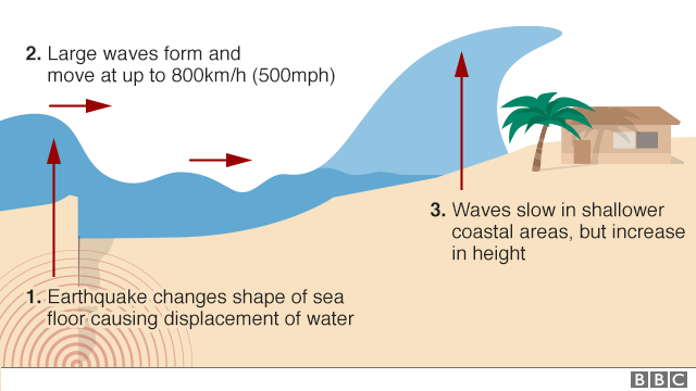 Graphic explains how tsunamis start fromchange in sea floor leading to displacement of water