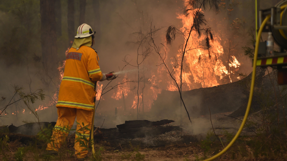 Australia fires: A lone firefighter aims his hose at burning vegetation while controlling a