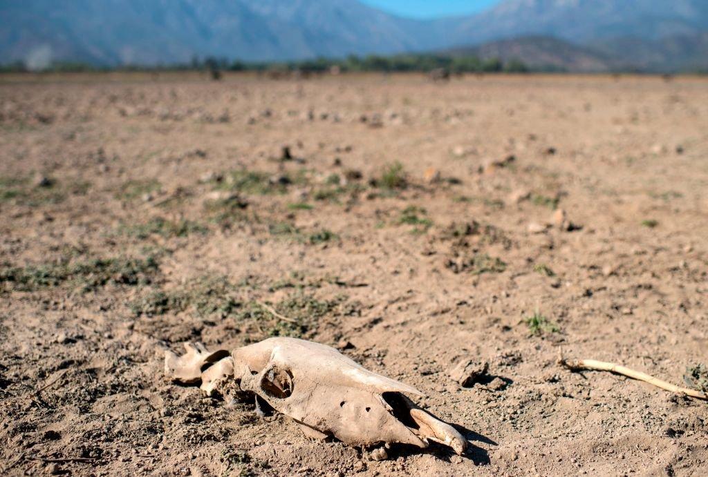 Jezereo Akuleo u Čileu je presušilo