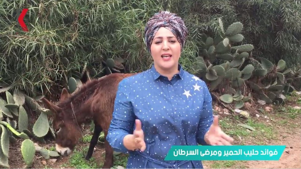 YouTuber presents a video in front of a donkey