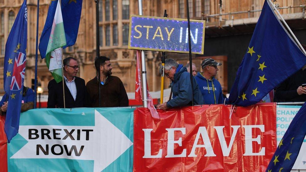 Partidarios del Brexit y de la permanencia de Reino Unido en la UE ante Westminster