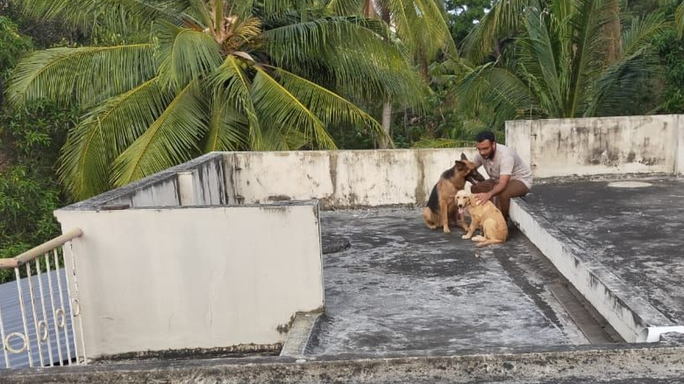 Ratheesh Sukumaran on his terrace with his dogs