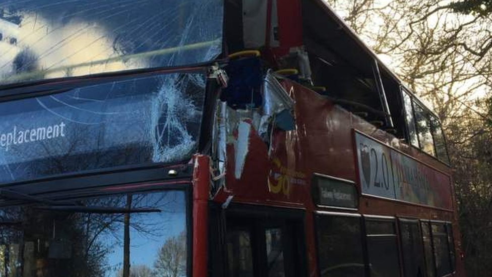 Two hurt as rail replacement bus hits tree near Brighton