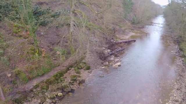 Allen Banks near Bardon Mill