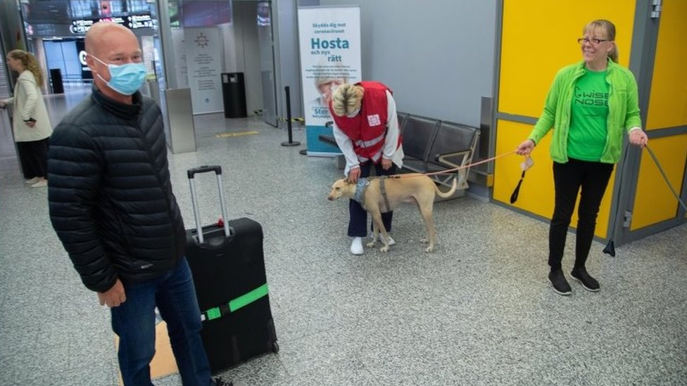 A passenger (left) prepares to be tested by sniffer dog Kossi. Photo: September 2020