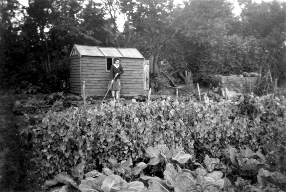 Ajlin Njujl, u bašti u Krojdonu u istočnom Londonu negde 1942. godine