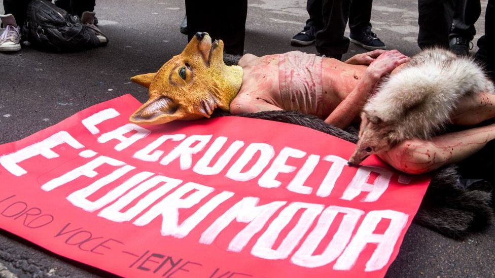 životinje, krzno, protest