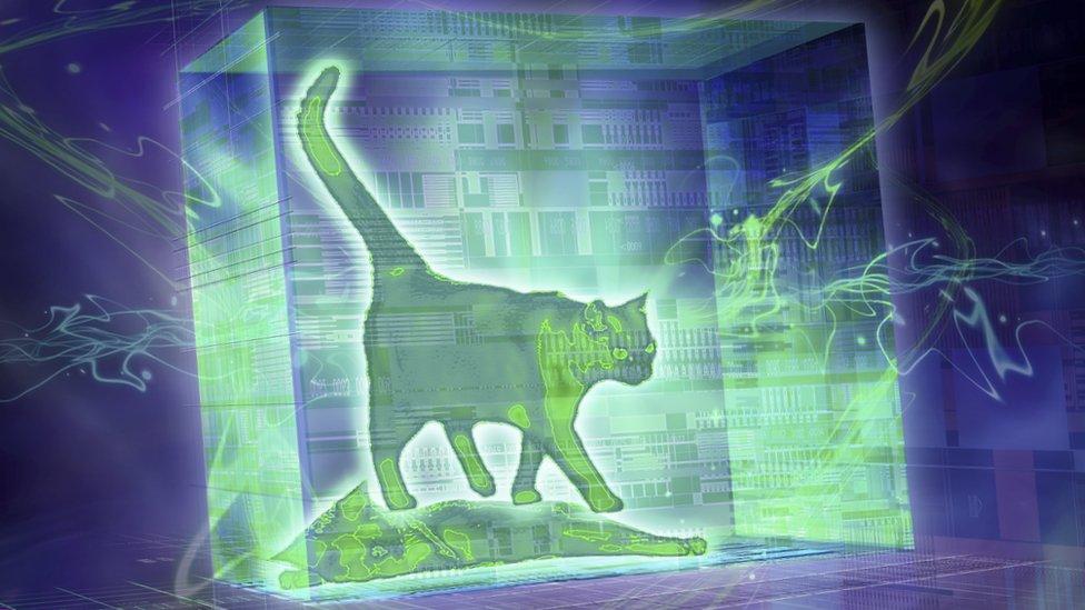 Illustration of the Schrödinger cat