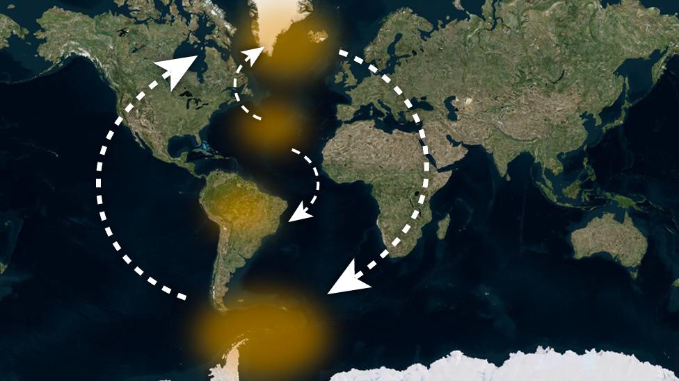 Mapa de los continentes con flechas que indican potenciales interacciones entre posibles puntos de no retorno