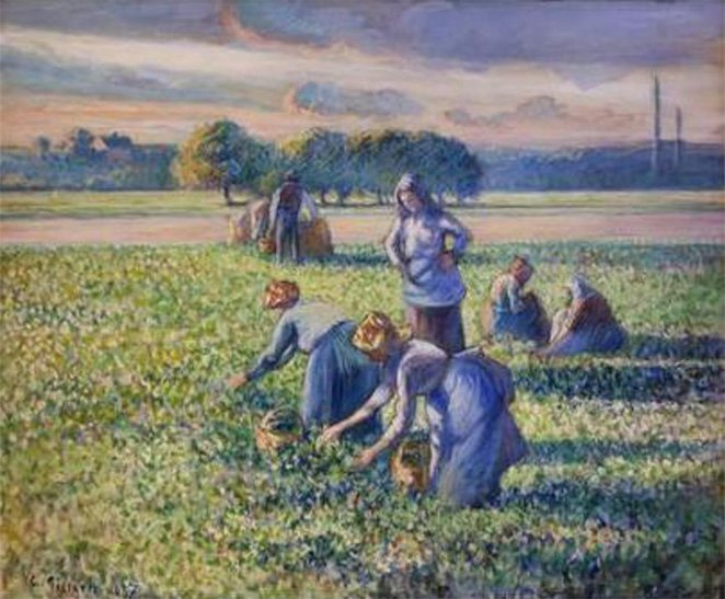 Picking Peas was painted in 1887 by Camille Pissarro
