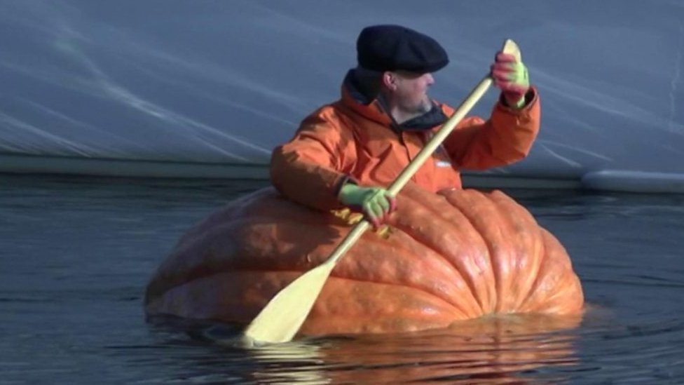 Pumpkin boat paddled down River Ouse in York