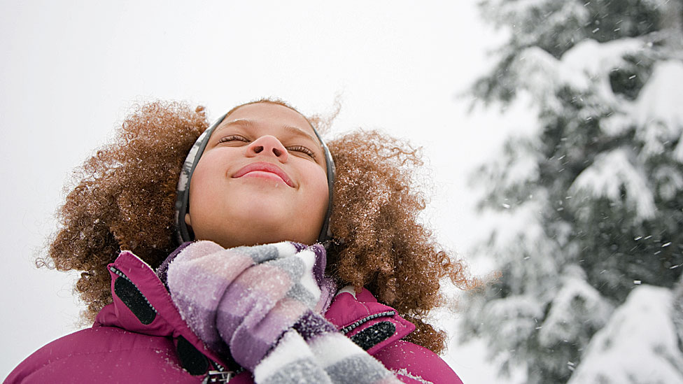 Snow excuses: E-learning on snow days