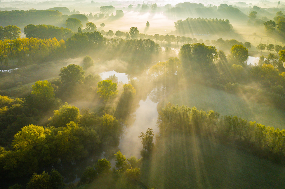 A landscape view of a foggy wooded valley with streaks of sunlight