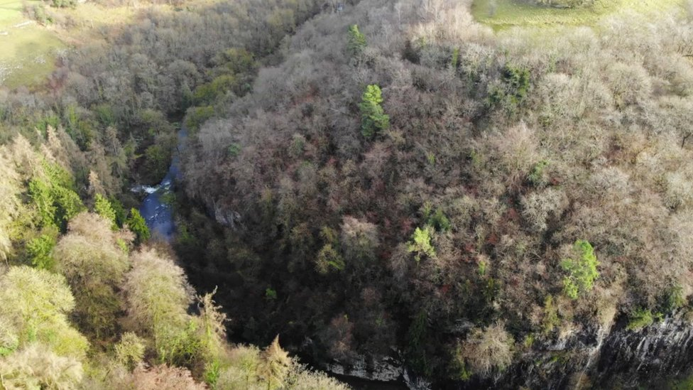 Cheedale reserve