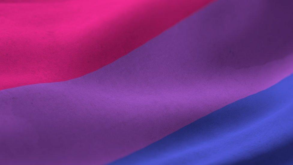 يضم علم ثنائيي الجنس ثلاثة ألوان: الوردي والقرمزي والأزرق