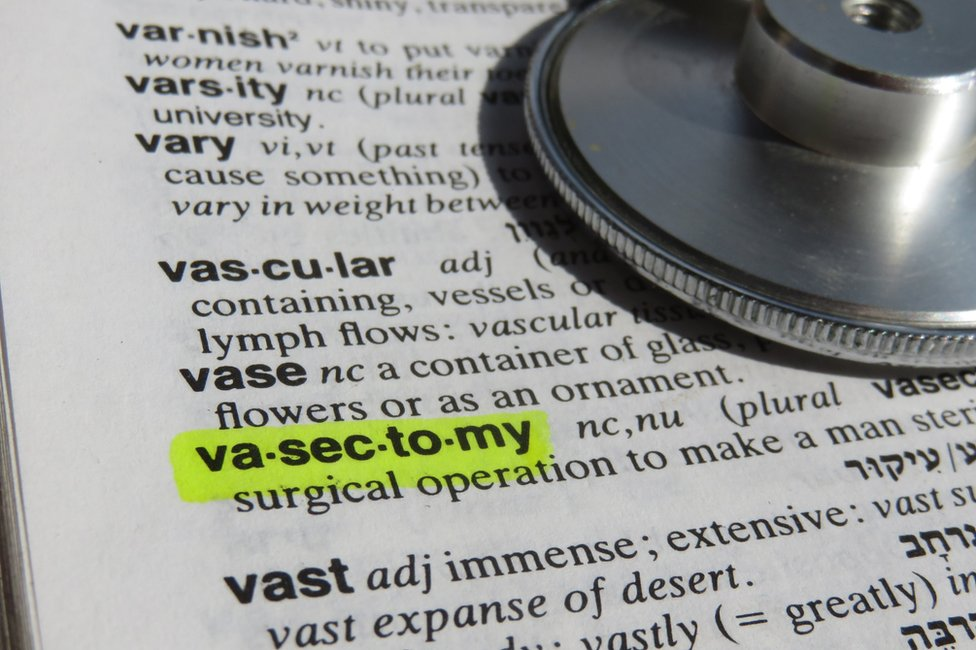 Definition of vasectomy in a dictionary