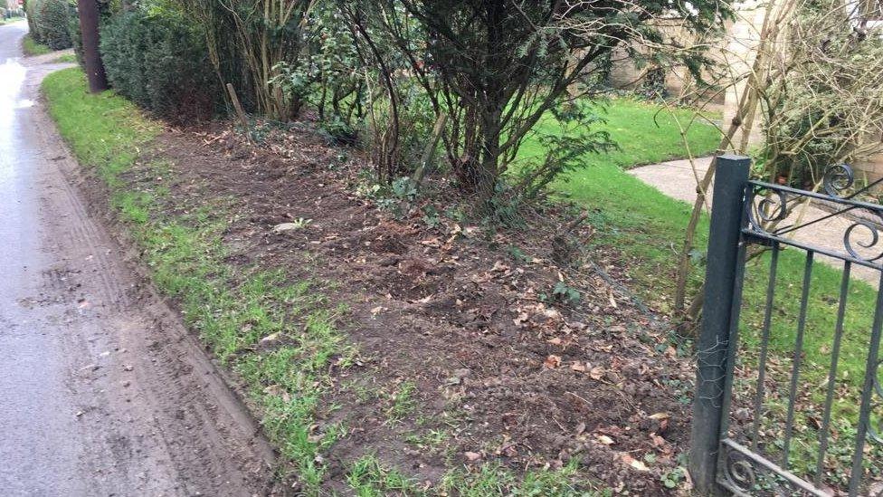 'Bizarre' garden hedge thefts in Suffolk village