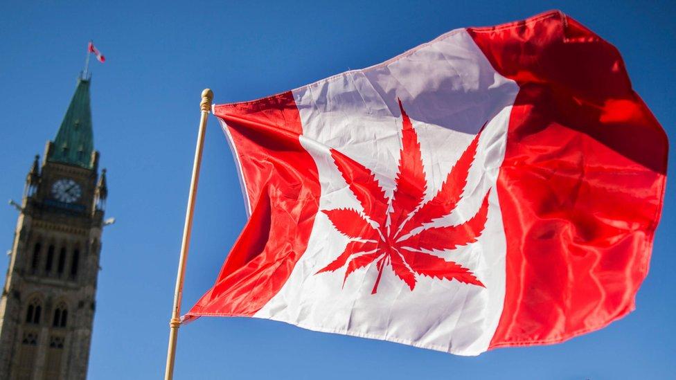 Woman waves a flag with a marijuana leaf (file photo)