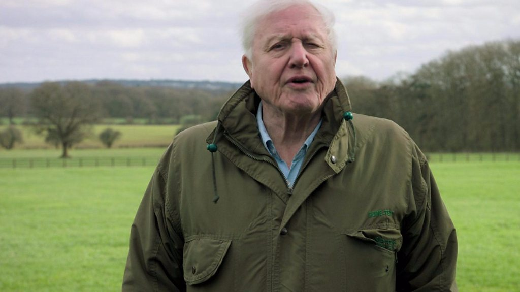 BBC News - Sir David Attenborough presents Climate Change - The Facts