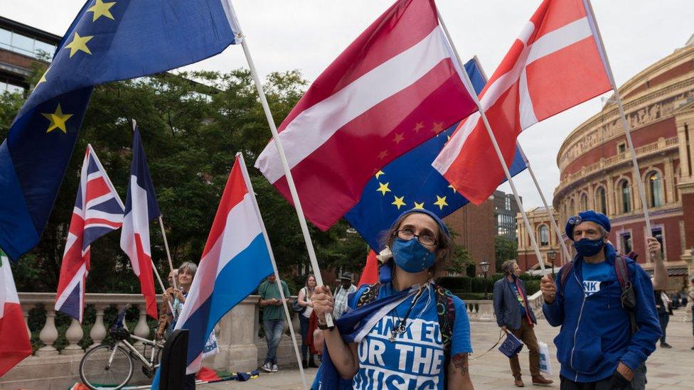 نشطاء وموسيقيون مؤيدون للاتحاد الأوروبي يلوحون بأعلامه في 11 سبتمبر/أيلول 2021 في لندن