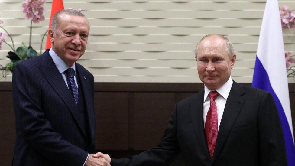 الرئيس الروسي فلاديمير بوتين يلتقي بالرئيس التركي رجب طيب أردوغان في سوتشي VLADIMIR SMIRNOVSPUTNIK/KREMLIN POOL