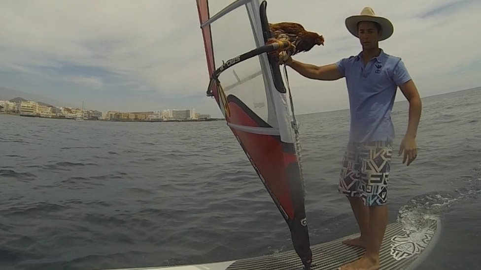 Sailor Guirec Soudee and hen Monique on a windsurf in the Antilles