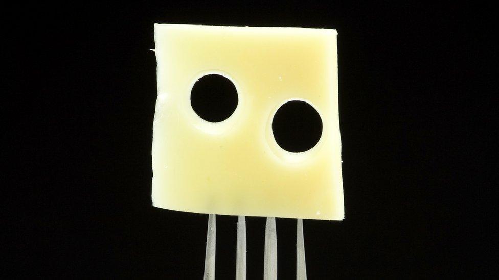 queso suizo