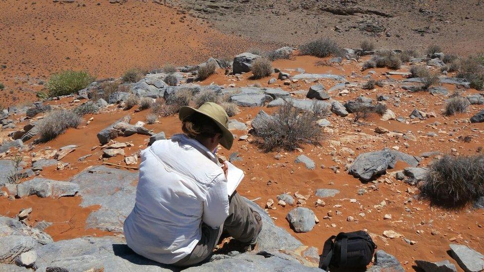 Investigadora en un campo en Namibia.
