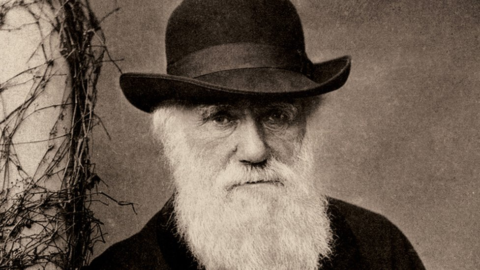 Charles Darwin: Notebooks worth millions lost for 20 yearson November 24, 2020 at 5:55 am