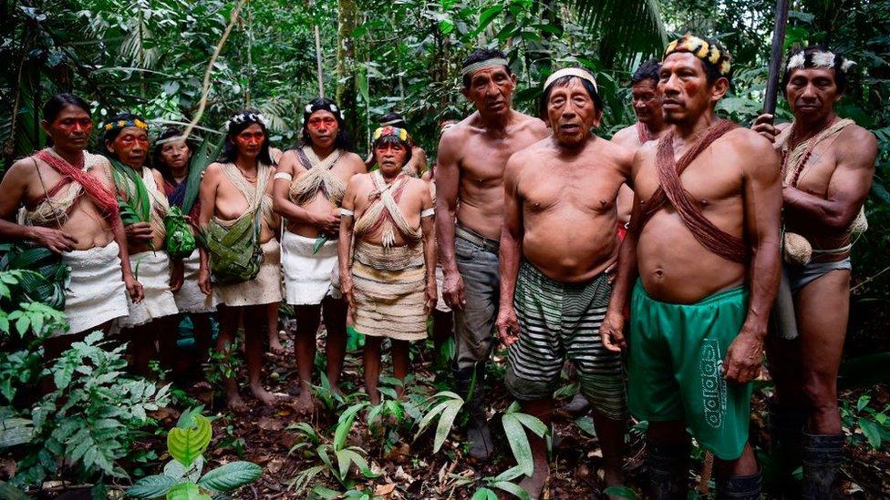 Los waorani viven en medio de la selva amazónica.