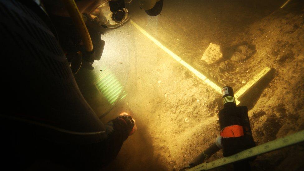 diver digging underwater