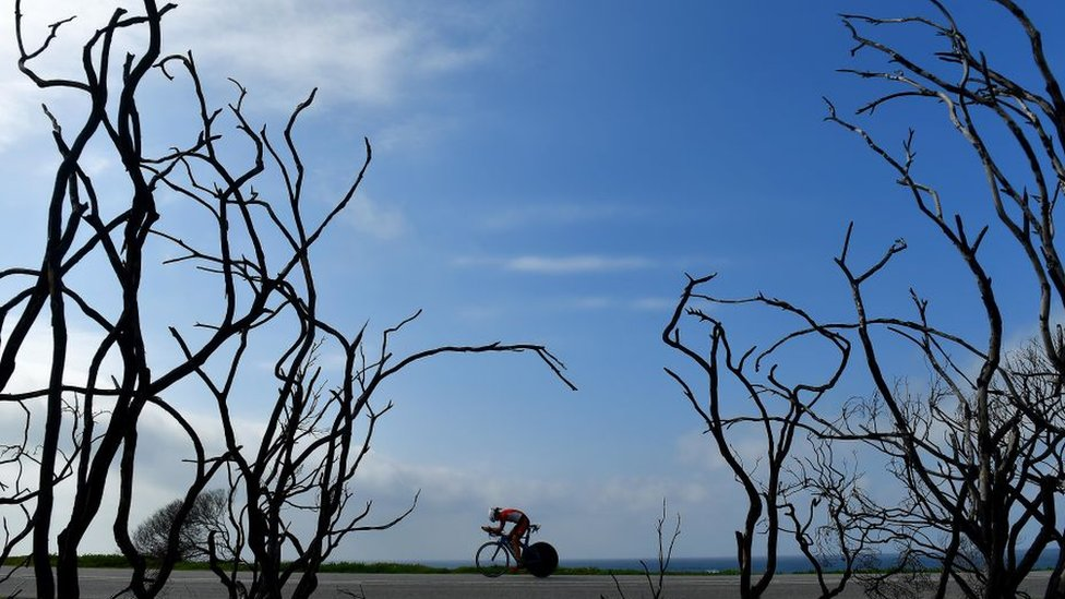 A triathlete bikes through petrifies trees during the Isuzu IRONMAN 70.3 World Championship Women on September 1, 2018 in Port Elizabeth, South Africa. Over 4,500 athletes from over 100 countries will be represented in this years 70.3 World Championship.