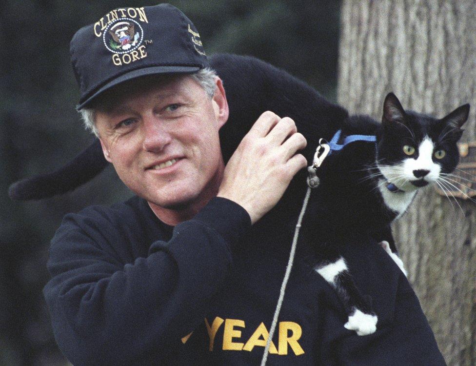الرئيس بيل كلينتون يتنزه مع قطته سوكس في عام 1993.