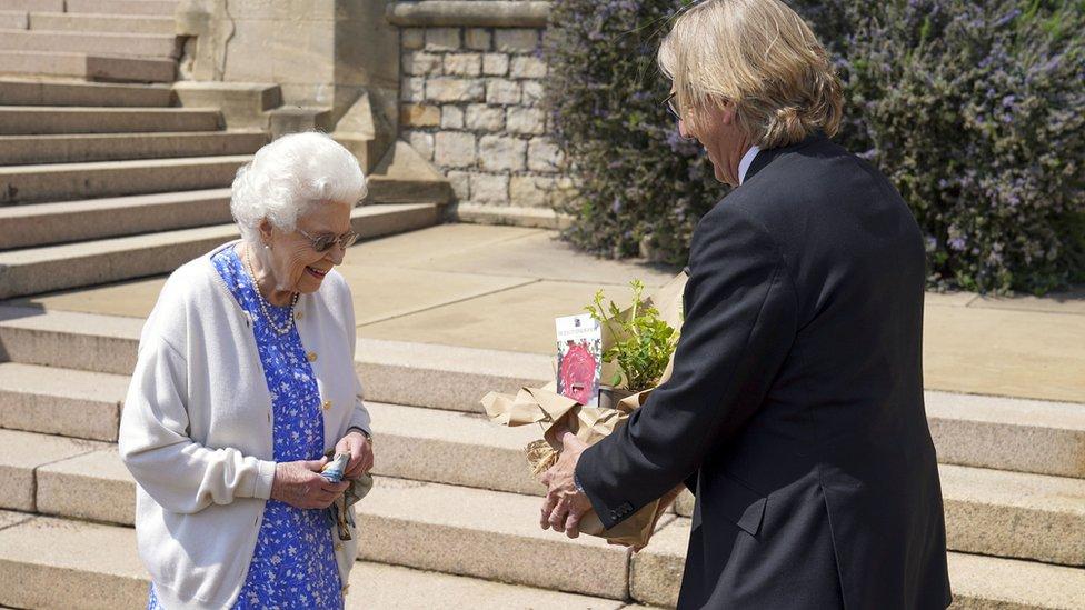 La Reina recogiendo la rosa.