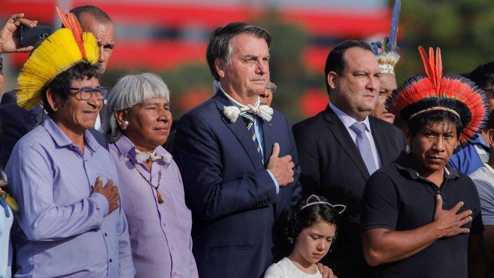 Bolsonaro'nun politikaları ormanları yok eden ticari çevreleri cesaretlendiriyor.