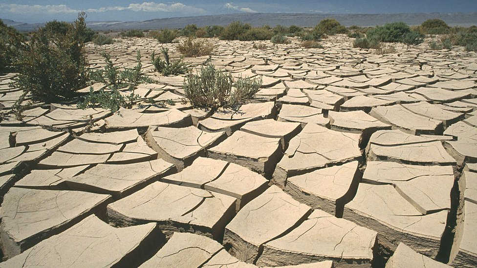 Desierto de Atacama.