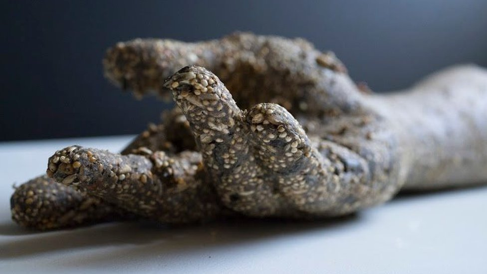 British artist Marco Chiandetti's edible birdseed sculptures are intentionally designed to be transitory