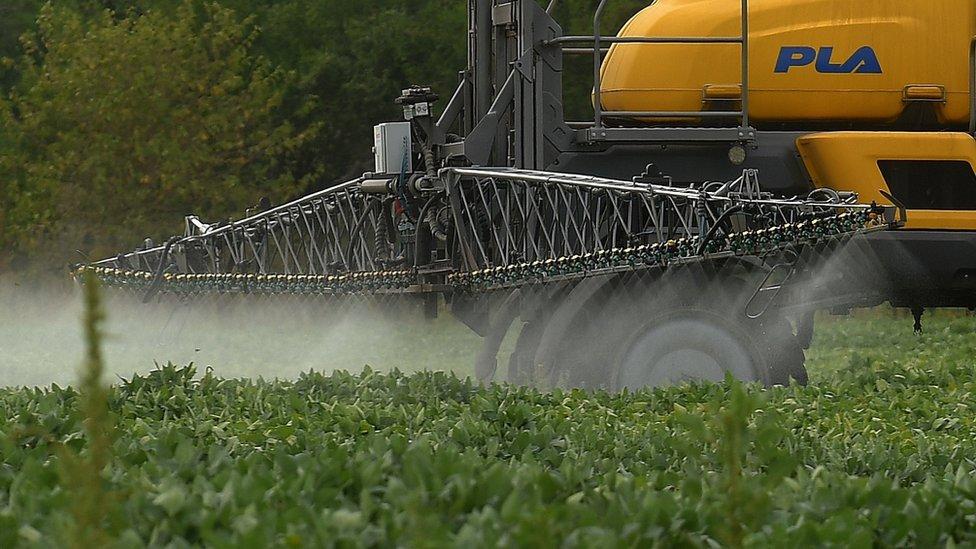 Un granjero rocía un herbicida