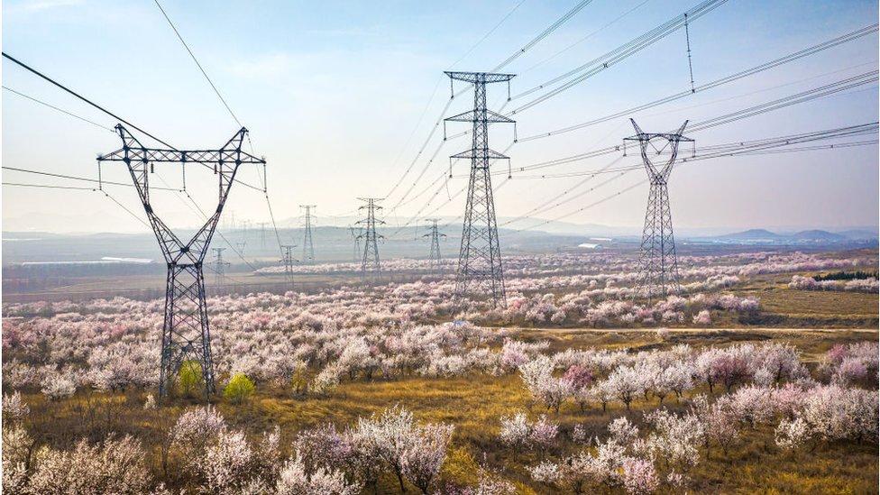東北地區的居民用電受到影響,引起輿論反彈