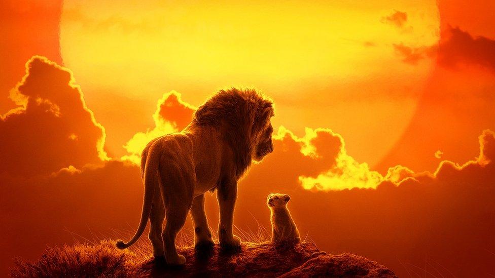 Poster za Kralja lavova