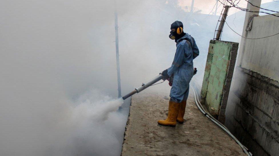 Komarci dimljenje zaprašđivanje Indonezija