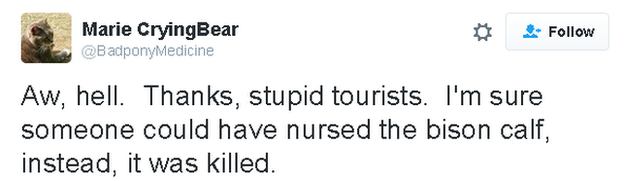 Tweet reads: Aw, hell. Thanks, stupid tourists. I'm sure someone could have nursed the bison calf, instead, it was killed.